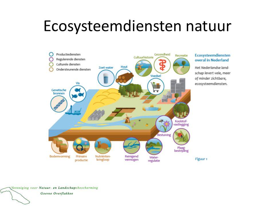 Ecosysteemdiensten natuur