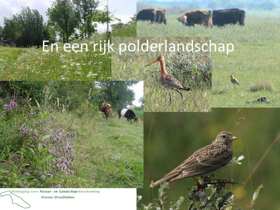 En een rijk polderlandschap