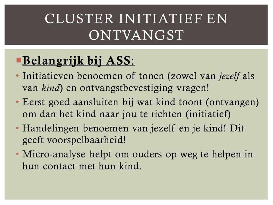 Cluster Initiatief en ontvangst