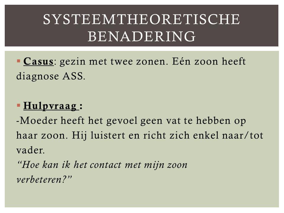 Systeemtheoretische benadering