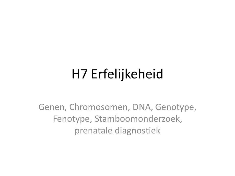 H7 Erfelijkeheid Genen, Chromosomen, DNA, Genotype, Fenotype, Stamboomonderzoek, prenatale diagnostiek.