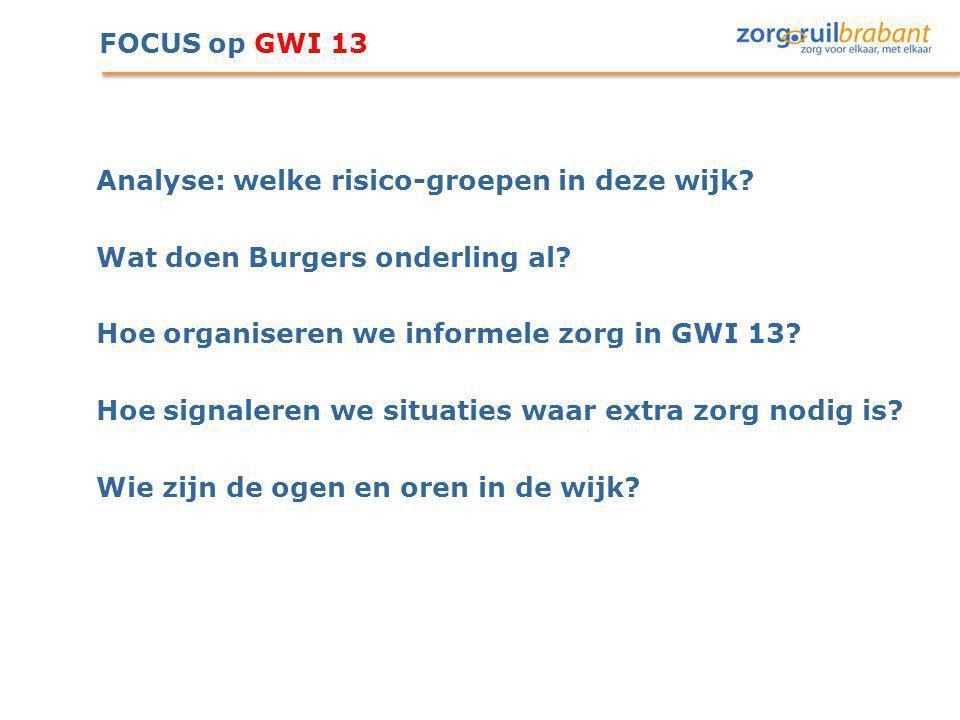 FOCUS op GWI 13 Analyse: welke risico-groepen in deze wijk Wat doen Burgers onderling al Hoe organiseren we informele zorg in GWI 13