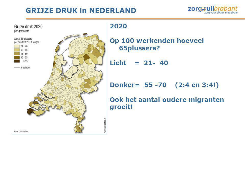 GRIJZE DRUK in NEDERLAND