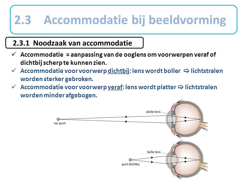2.3 Accommodatie bij beeldvorming