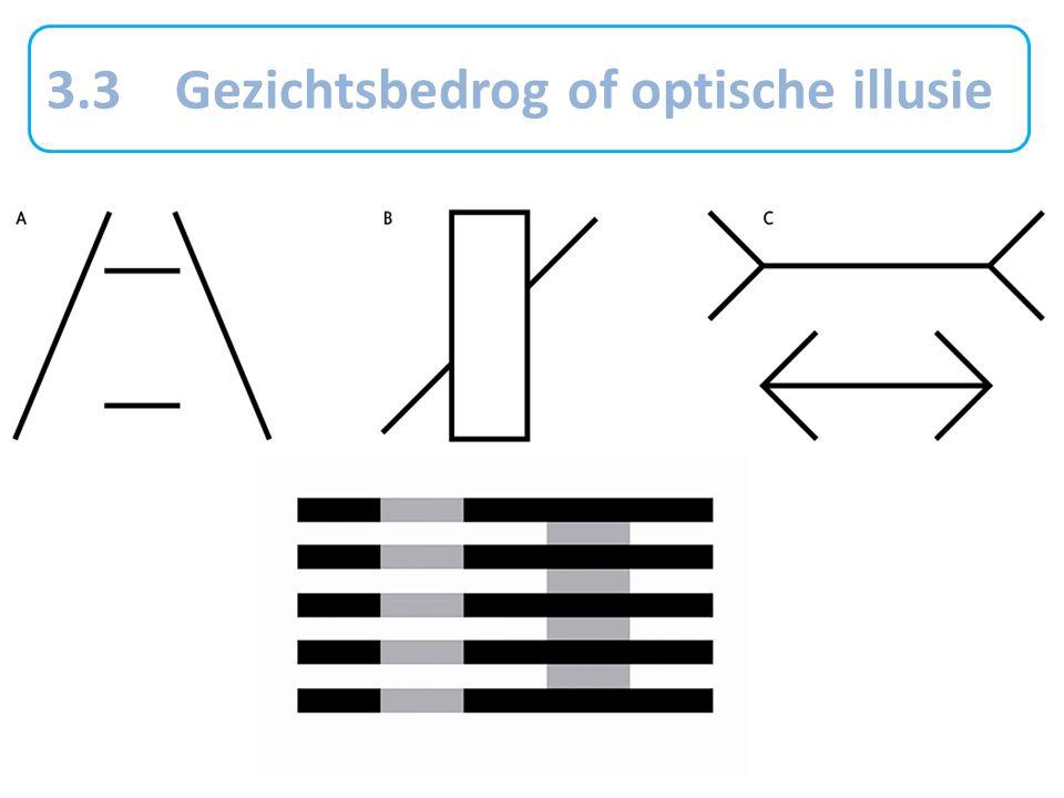 3.3 Gezichtsbedrog of optische illusie