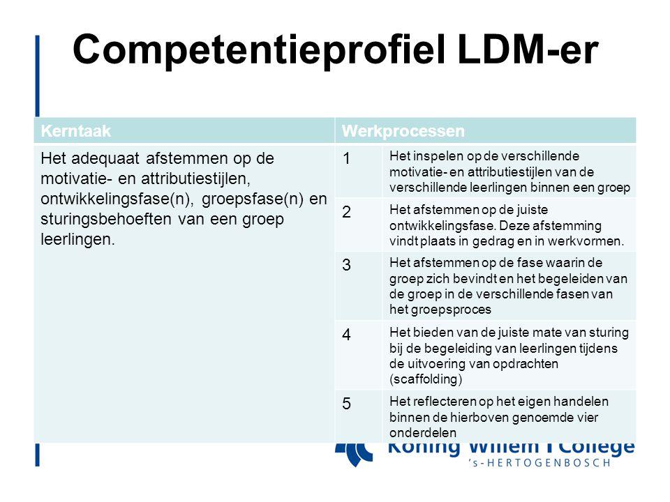 Competentieprofiel LDM-er