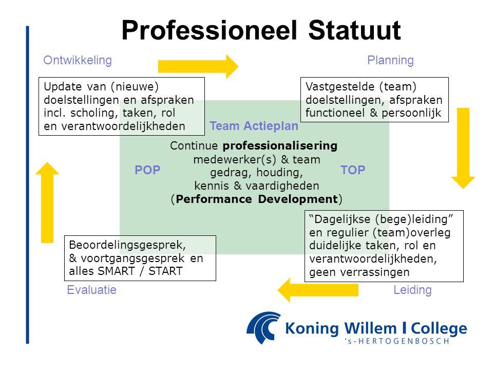 Professioneel Statuut