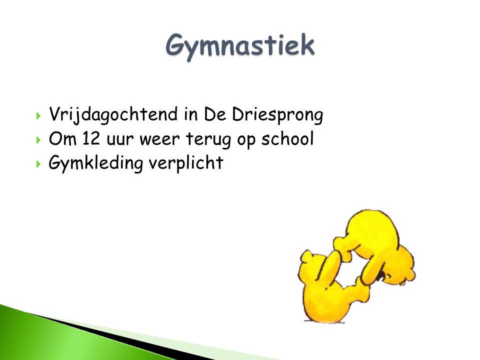 Gymnastiek Vrijdagochtend in De Driesprong