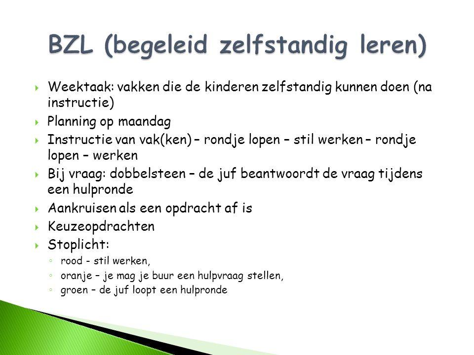 BZL (begeleid zelfstandig leren)