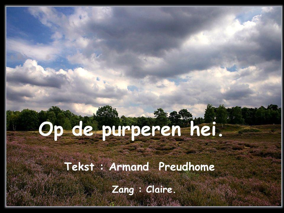 Tekst : Armand Preudhome