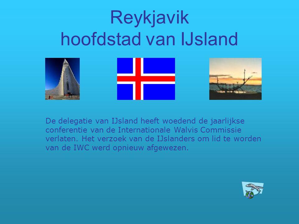 Reykjavik hoofdstad van IJsland