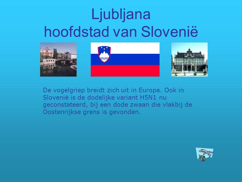 Ljubljana hoofdstad van Slovenië