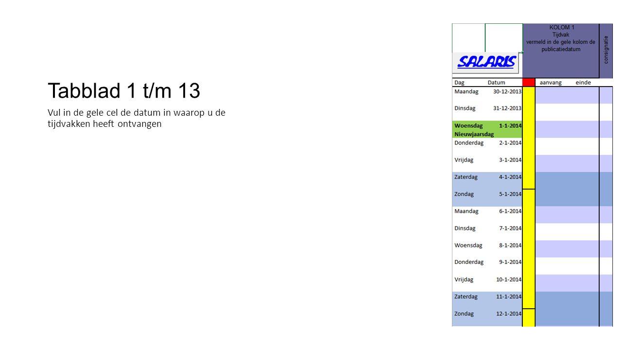 Tabblad 1 t/m 13 Vul in de gele cel de datum in waarop u de tijdvakken heeft ontvangen