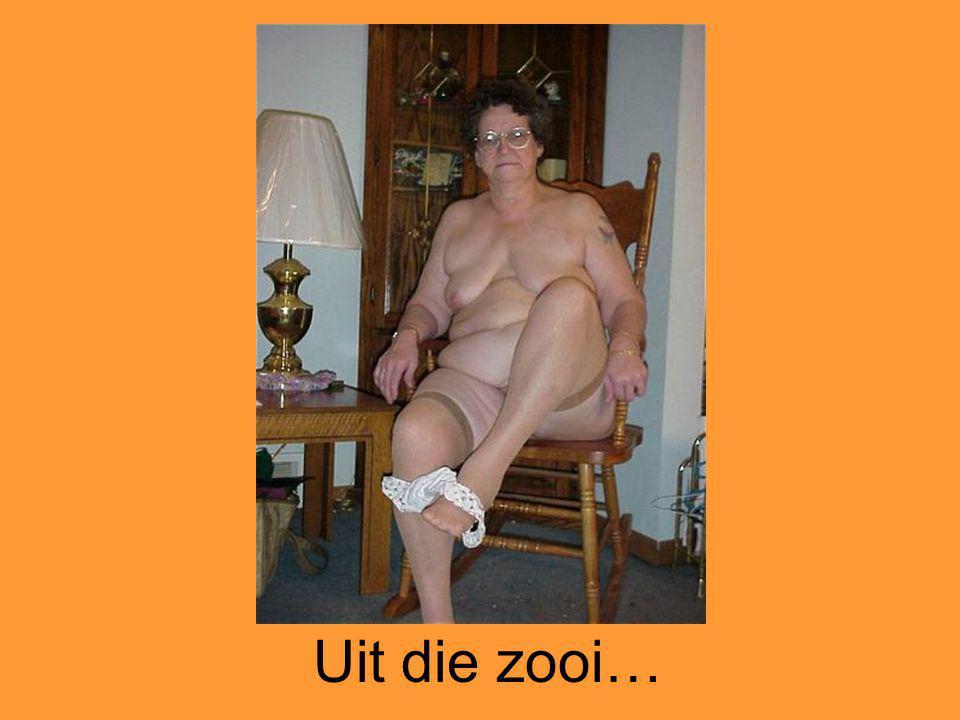 Uit die zooi…