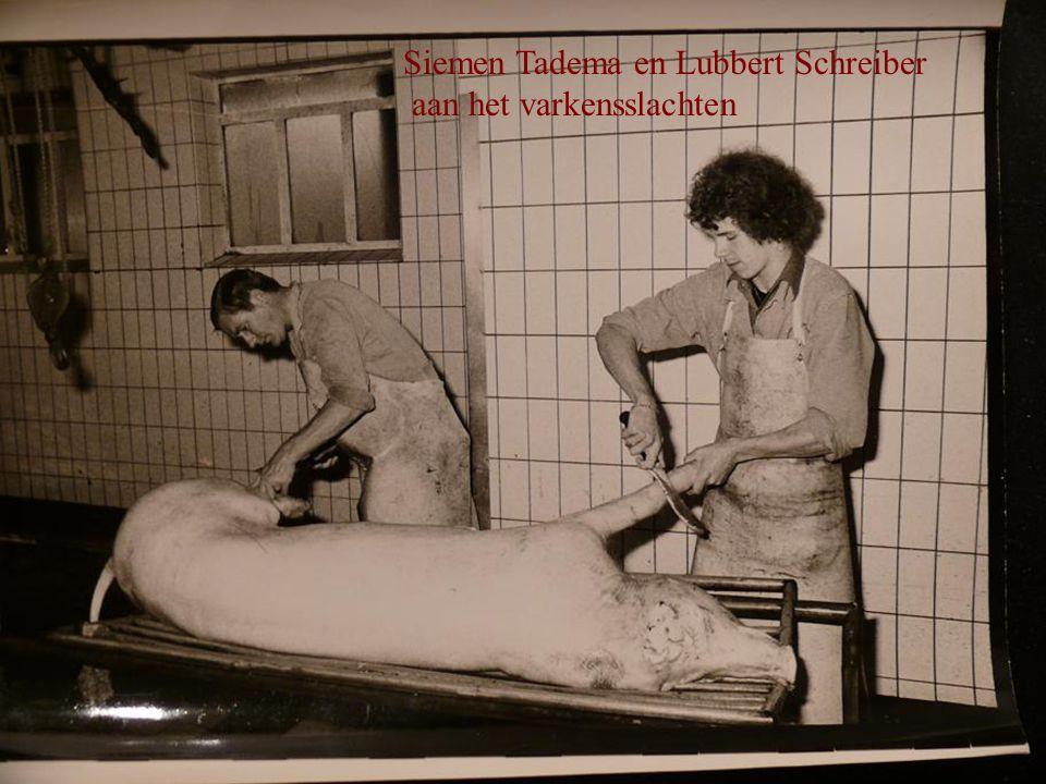 Siemen Tadema en Lubbert Schreiber