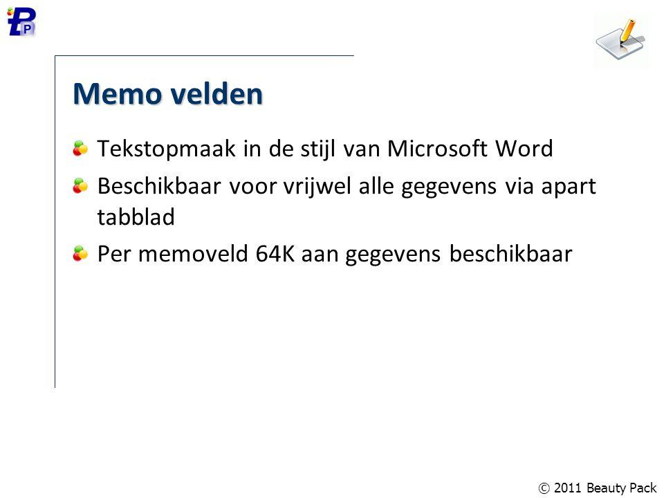 Memo velden Tekstopmaak in de stijl van Microsoft Word