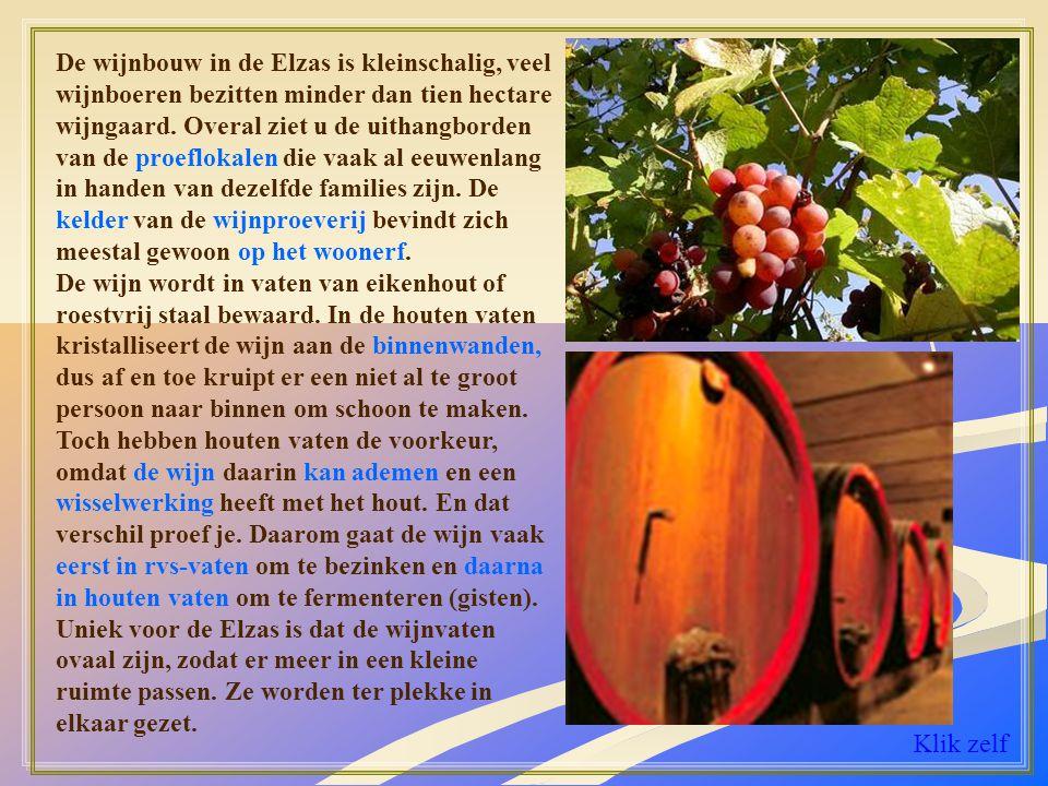 De wijnbouw in de Elzas is kleinschalig, veel wijnboeren bezitten minder dan tien hectare wijngaard. Overal ziet u de uithangborden van de proeflokalen die vaak al eeuwenlang in handen van dezelfde families zijn. De kelder van de wijnproeverij bevindt zich meestal gewoon op het woonerf.