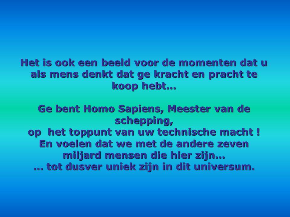 Ge bent Homo Sapiens, Meester van de schepping,