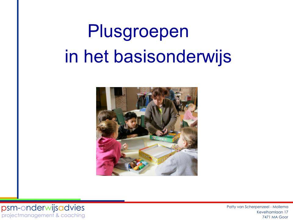 Plusgroepen in het basisonderwijs