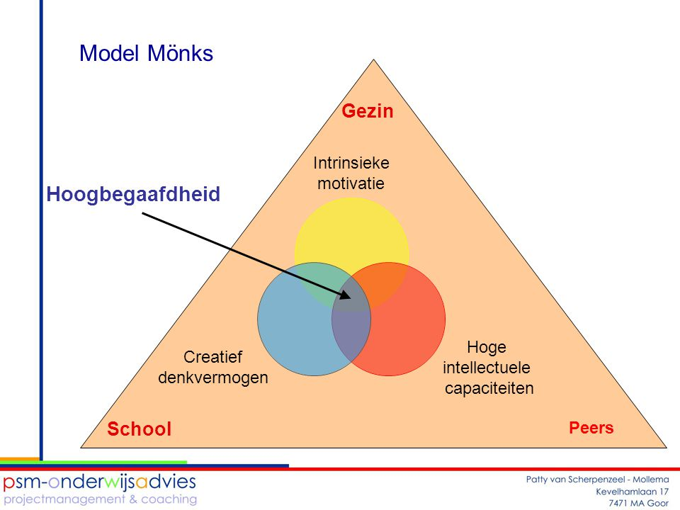 Model Mönks Gezin Hoogbegaafdheid School Peers
