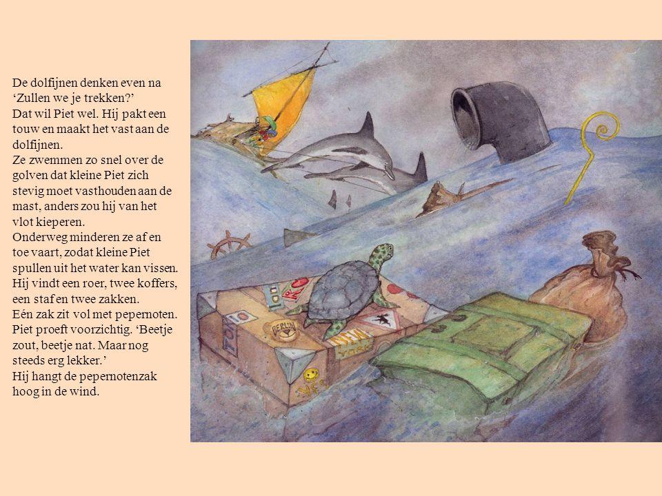 De dolfijnen denken even na 'Zullen we je trekken. ' Dat wil Piet wel