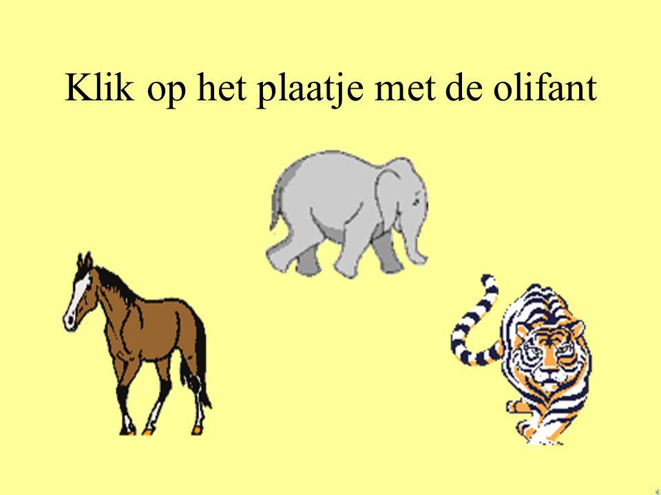 Klik op het plaatje met de olifant