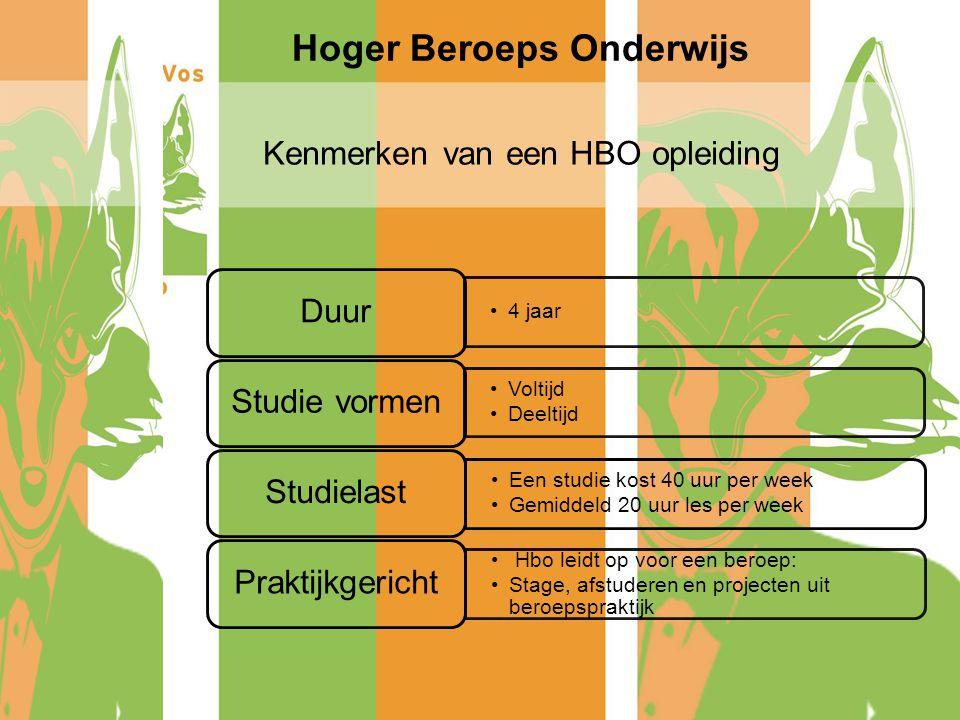 Informatieavond havo ppt video online download for Opleiding hovenier hbo