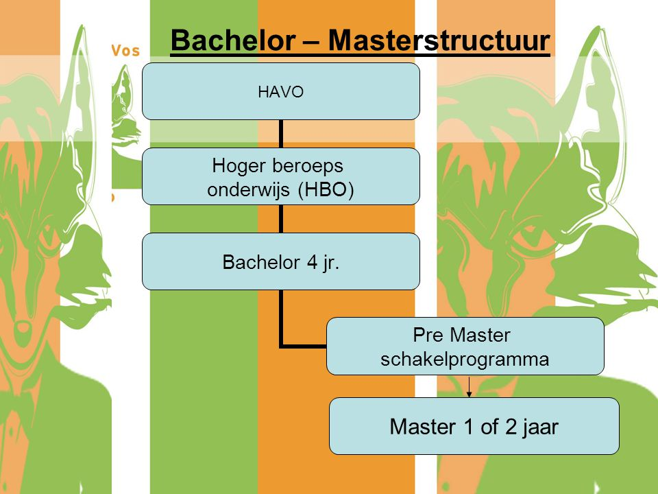 Bachelor – Masterstructuur