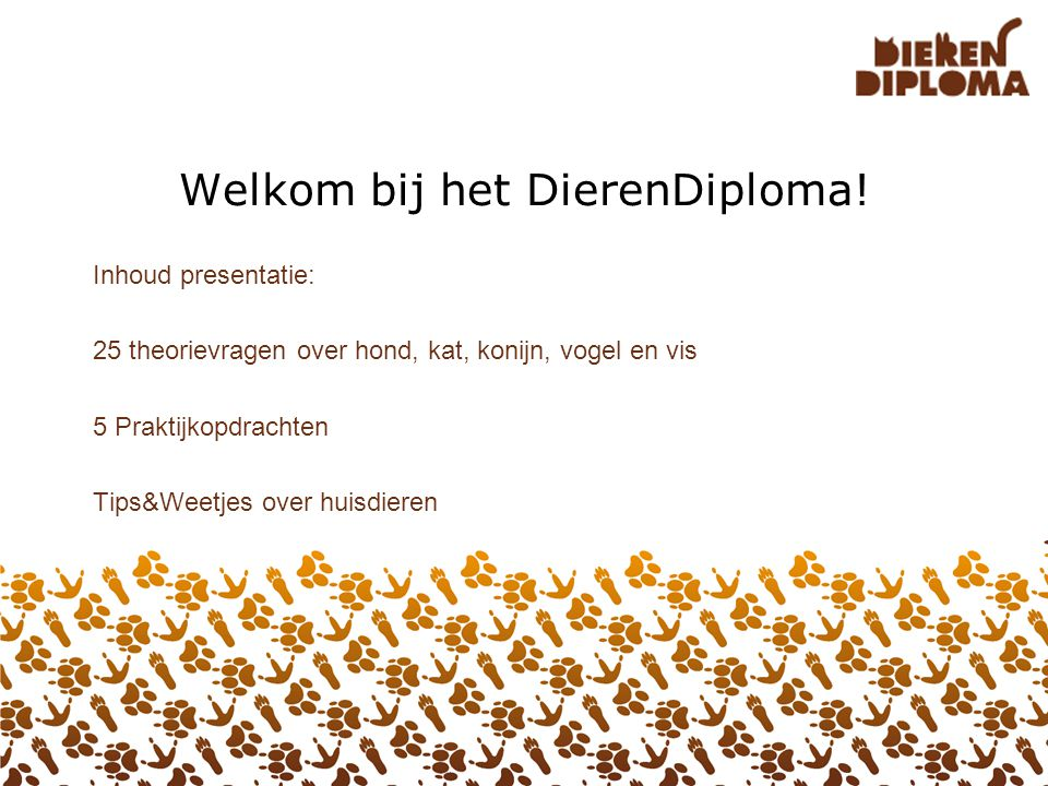 Welkom bij het DierenDiploma!