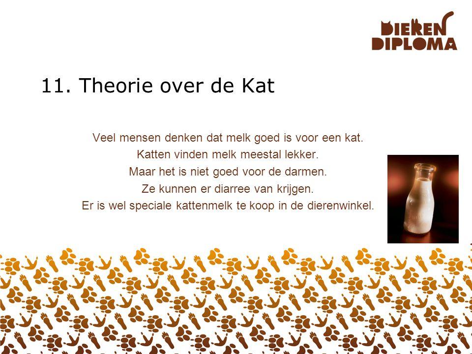 11. Theorie over de Kat Veel mensen denken dat melk goed is voor een kat. Katten vinden melk meestal lekker.