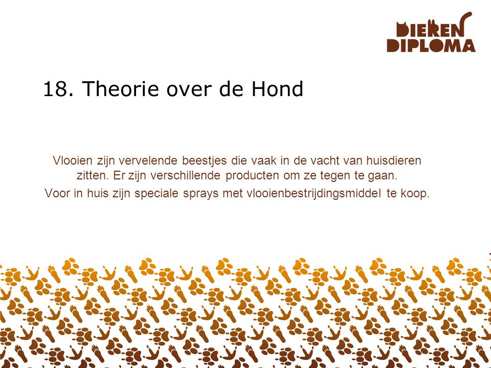18. Theorie over de Hond