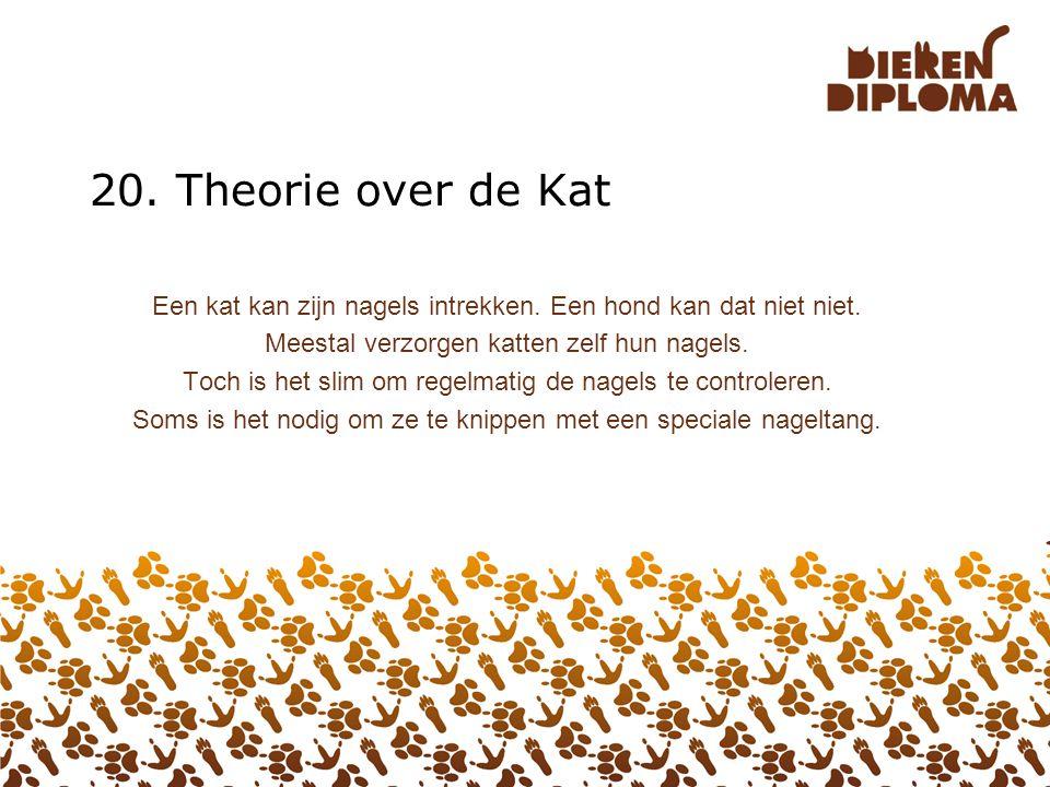 20. Theorie over de Kat Een kat kan zijn nagels intrekken. Een hond kan dat niet niet. Meestal verzorgen katten zelf hun nagels.