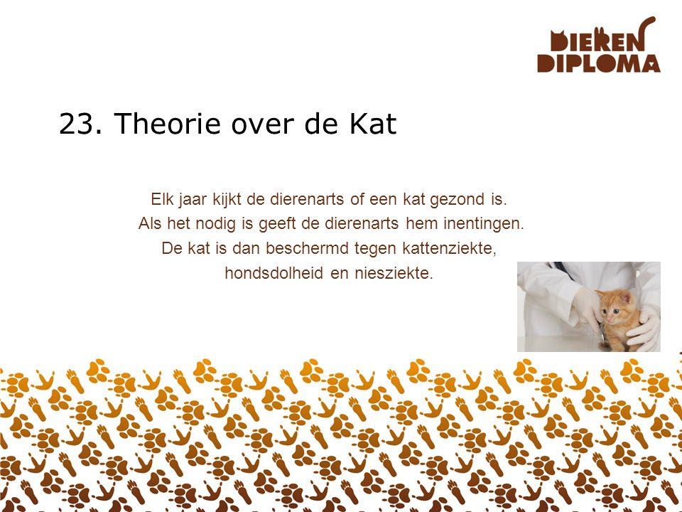 23. Theorie over de Kat Elk jaar kijkt de dierenarts of een kat gezond is. Als het nodig is geeft de dierenarts hem inentingen.