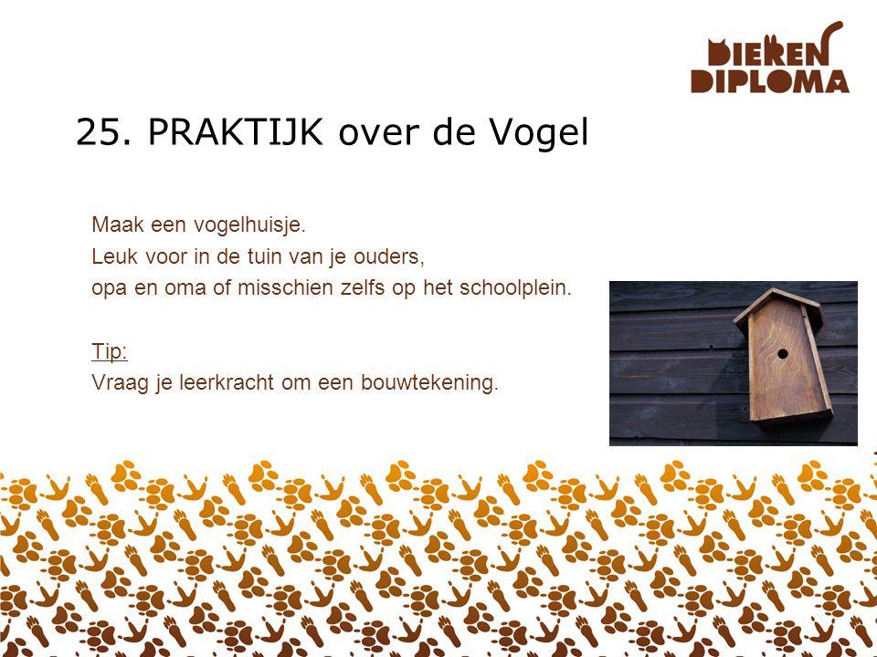 25. PRAKTIJK over de Vogel Maak een vogelhuisje.