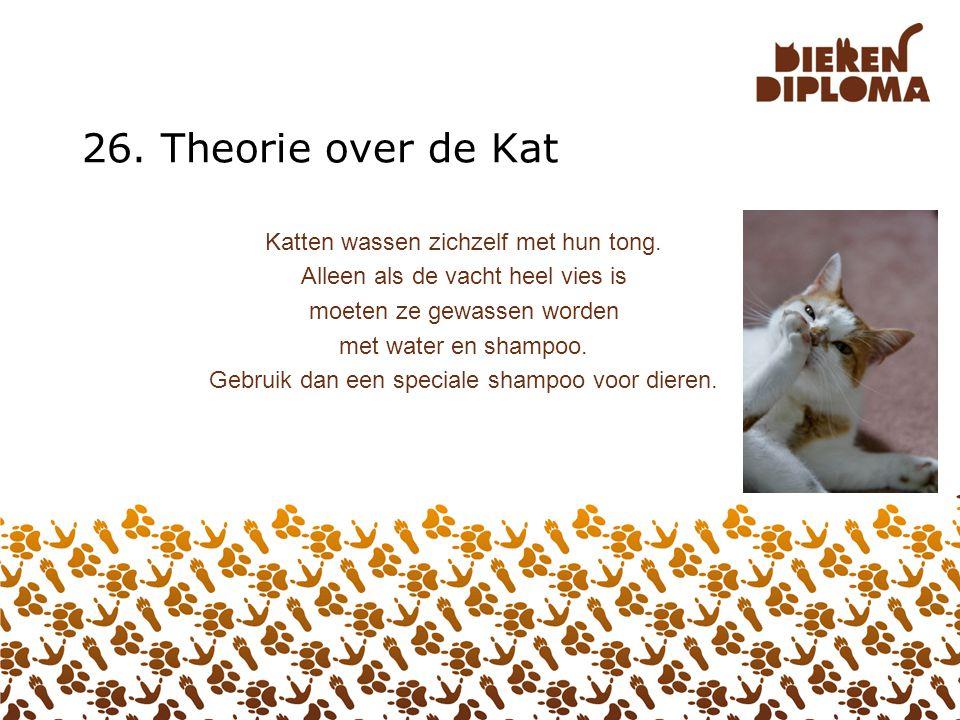 26. Theorie over de Kat Katten wassen zichzelf met hun tong.