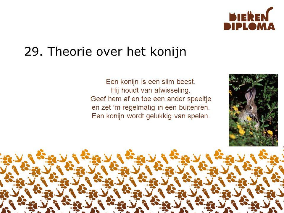 29. Theorie over het konijn