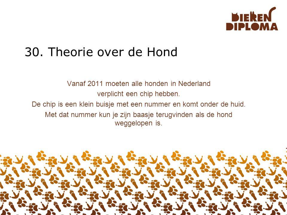 30. Theorie over de Hond Vanaf 2011 moeten alle honden in Nederland
