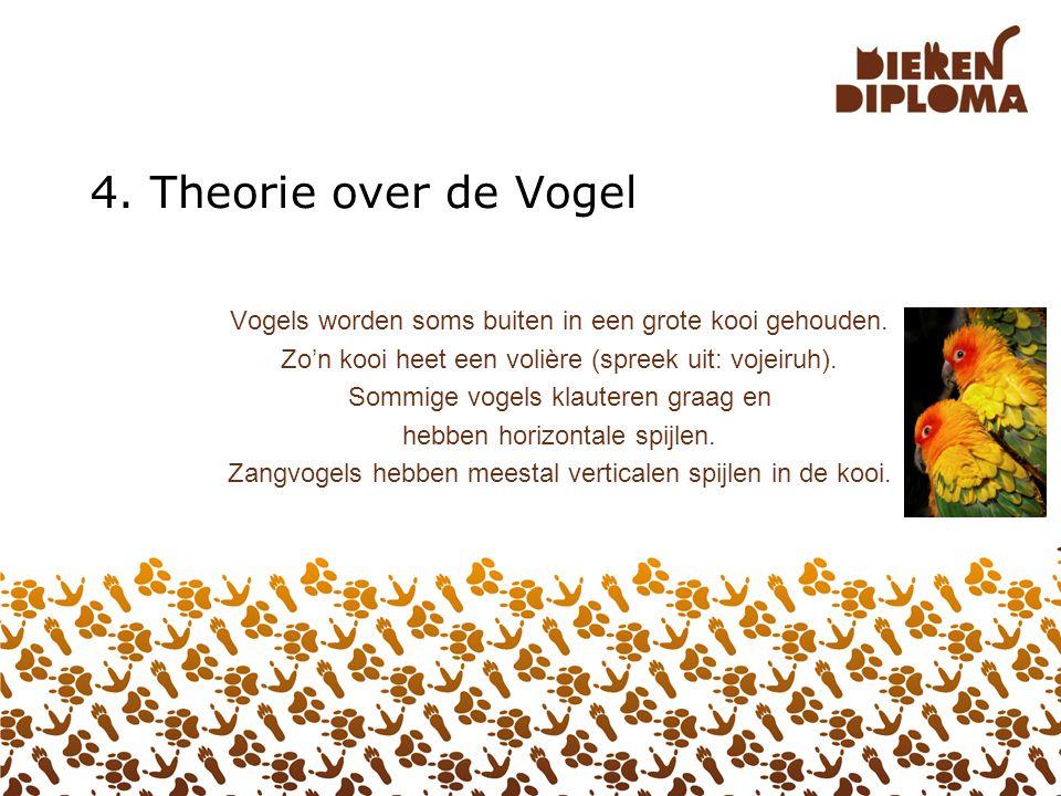 4. Theorie over de Vogel Vogels worden soms buiten in een grote kooi gehouden. Zo'n kooi heet een volière (spreek uit: vojeiruh).