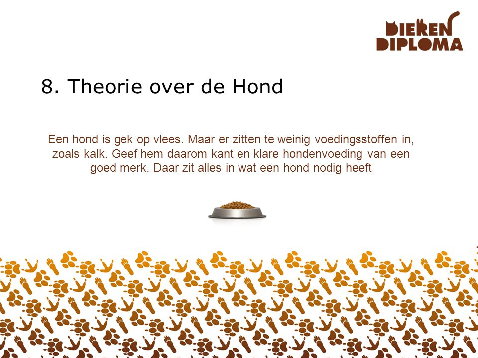 8. Theorie over de Hond