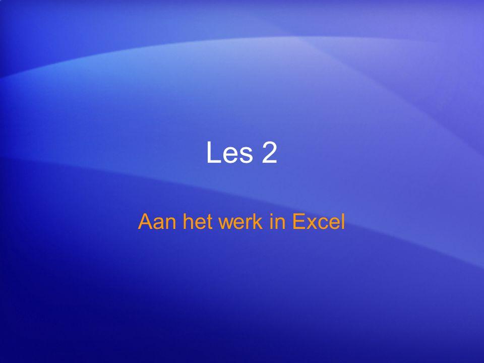 Les 2 Aan het werk in Excel