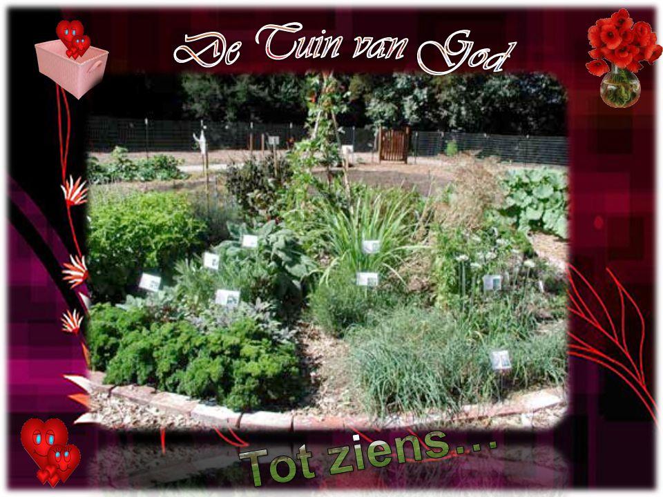 De Tuin van God Tot ziens…