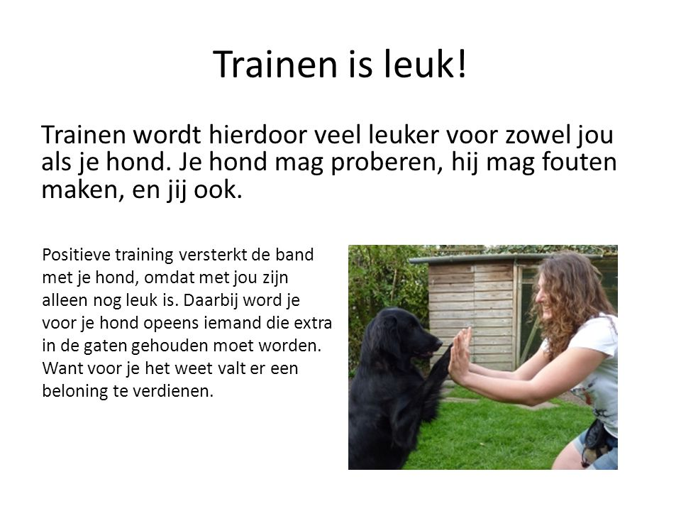 Trainen is leuk! Trainen wordt hierdoor veel leuker voor zowel jou als je hond. Je hond mag proberen, hij mag fouten maken, en jij ook.