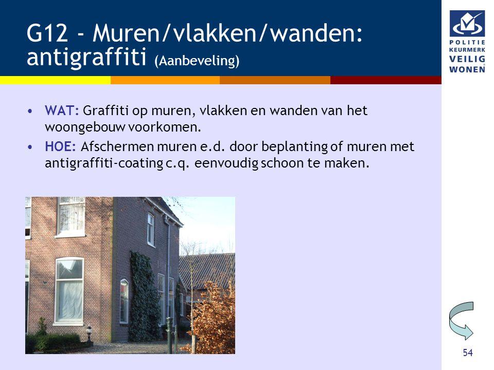G12 - Muren/vlakken/wanden: antigraffiti (Aanbeveling)