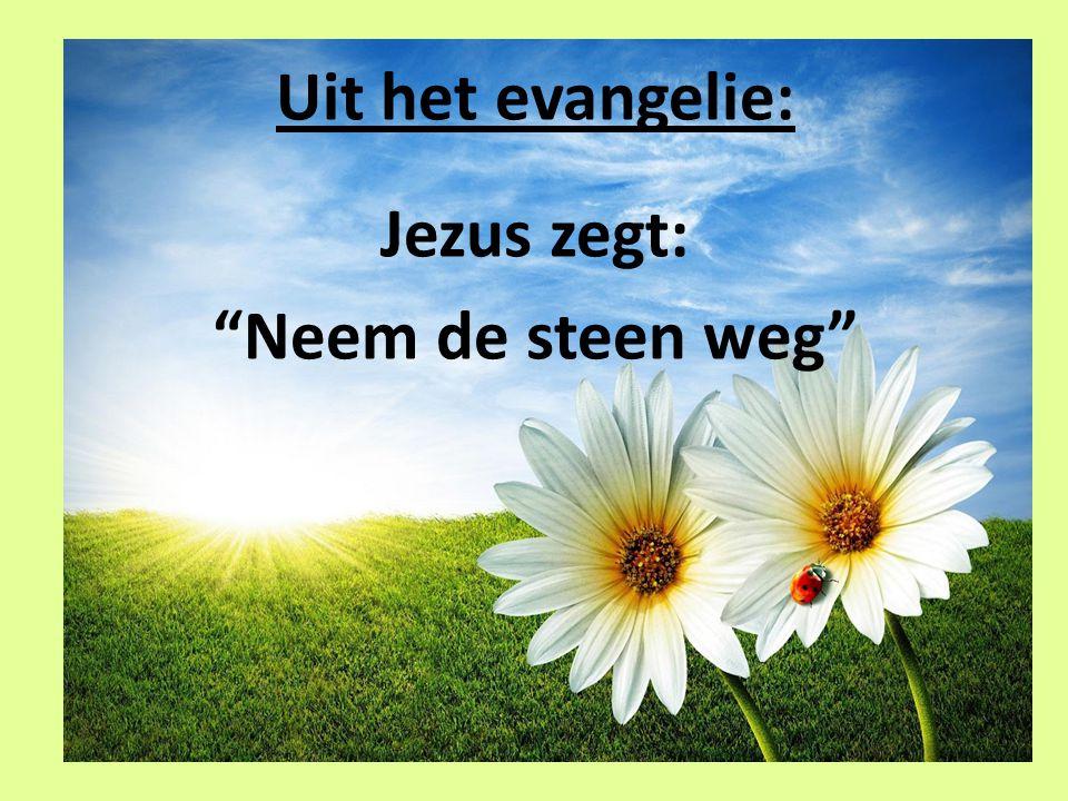Uit het evangelie: Jezus zegt: Neem de steen weg