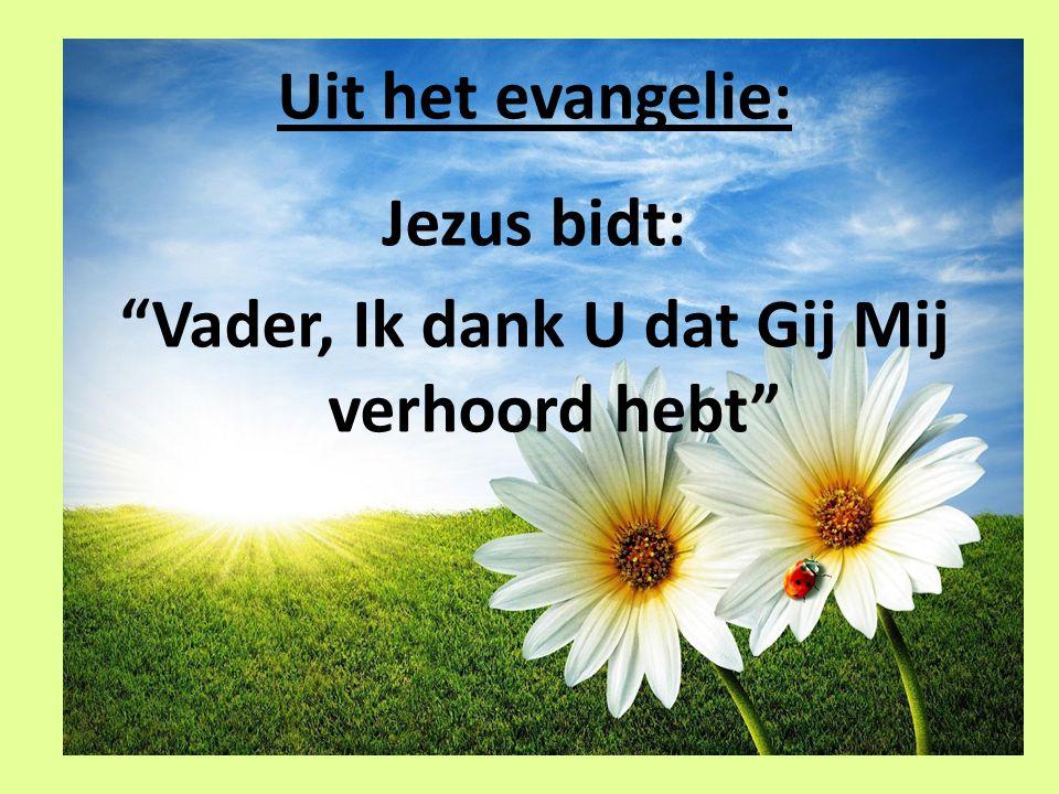 Uit het evangelie: Jezus bidt: Vader, Ik dank U dat Gij Mij verhoord hebt