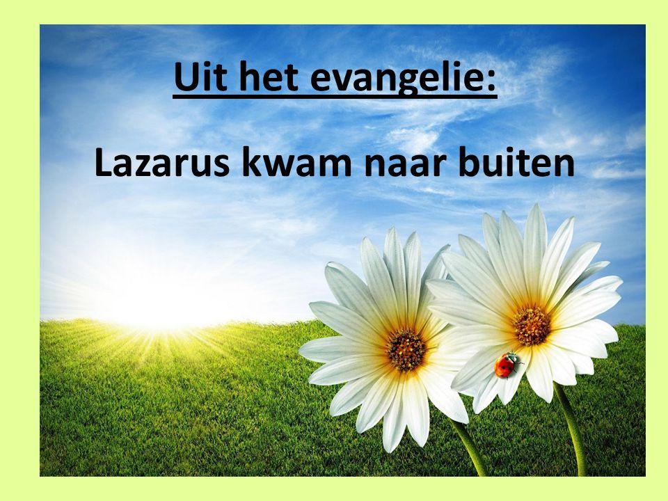 Uit het evangelie: Lazarus kwam naar buiten