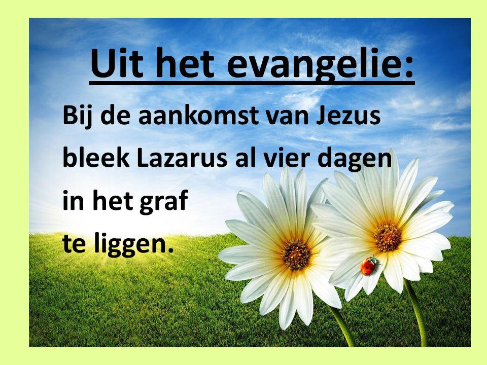 Uit het evangelie: Bij de aankomst van Jezus