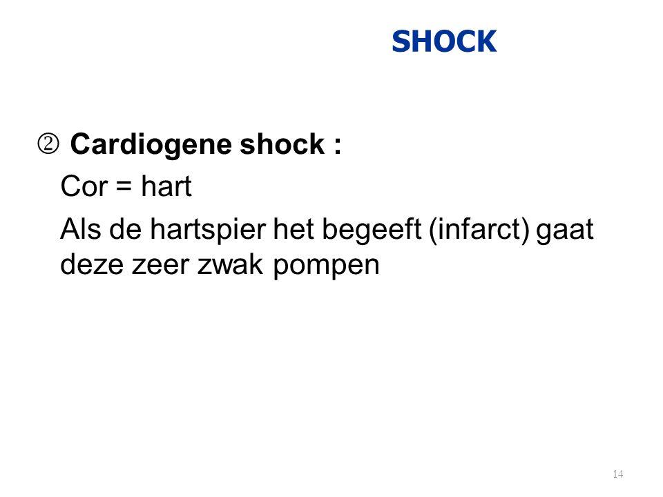 Als de hartspier het begeeft (infarct) gaat deze zeer zwak pompen