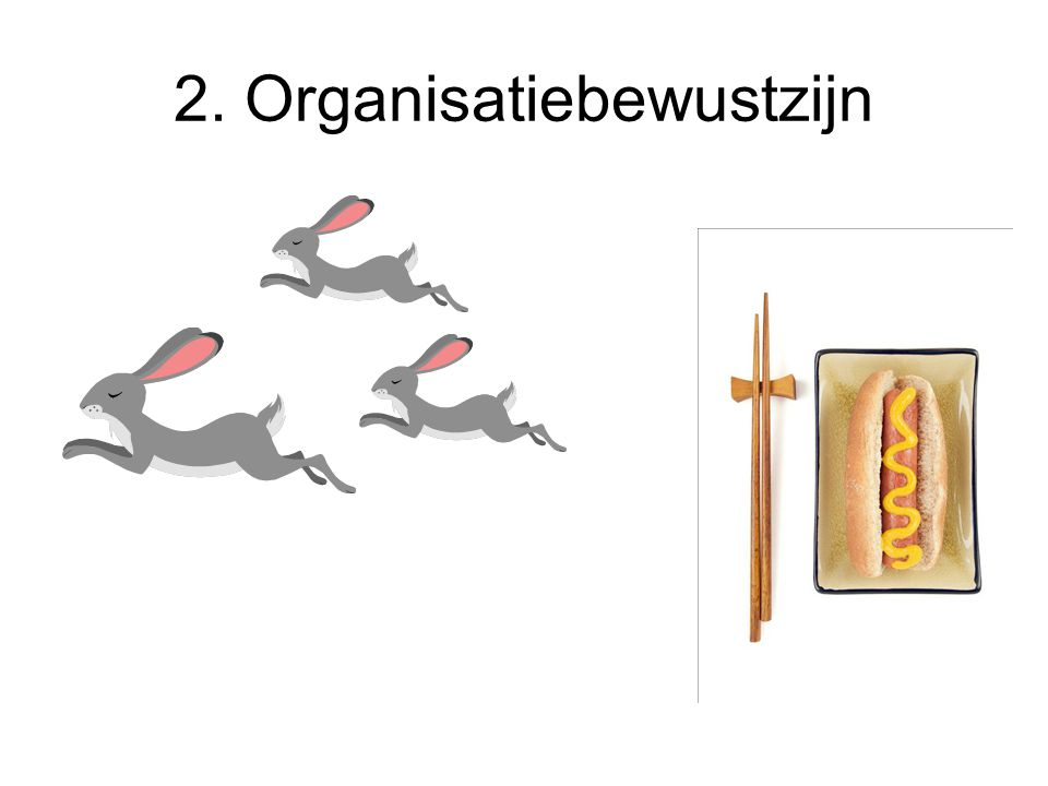2. Organisatiebewustzijn