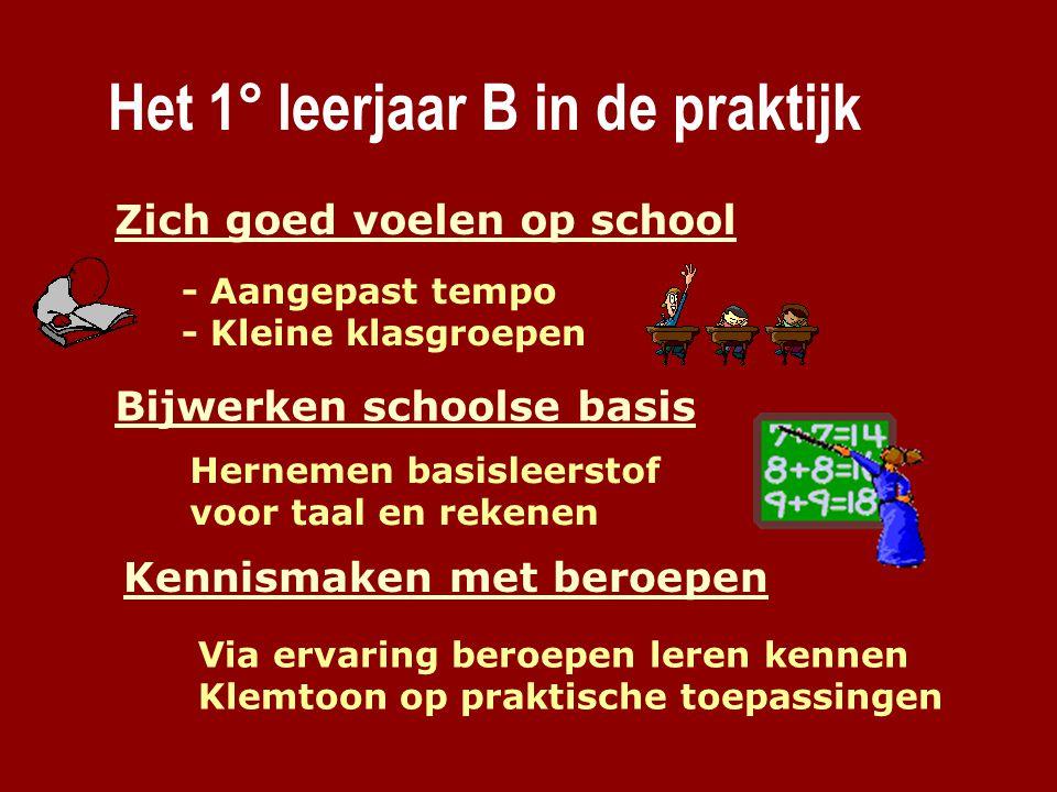 Het 1° leerjaar B in de praktijk